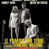 Nouvelle affiche du Paradis sur Terre avec Johnny Hallyday