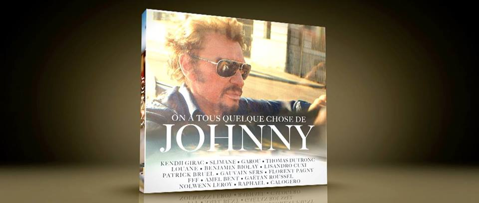 Quelque chose de johnny hallyday